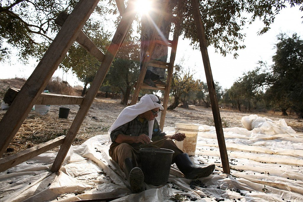 Settler violence poses a serious challenge for many Palestinian